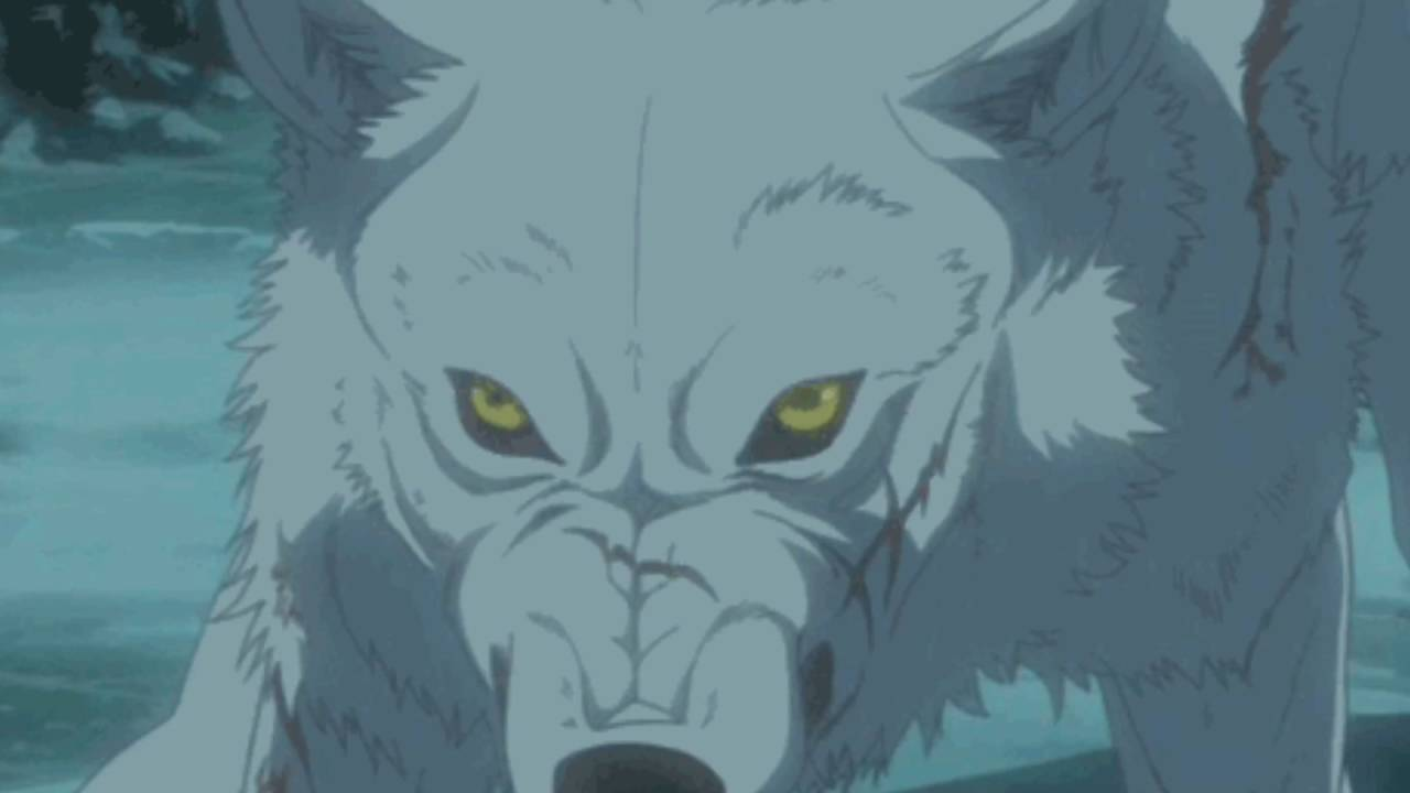 Картинки волков из волчьего дождя гифки