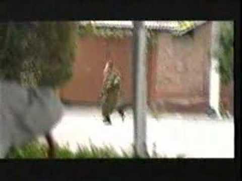 Beslan Tribute