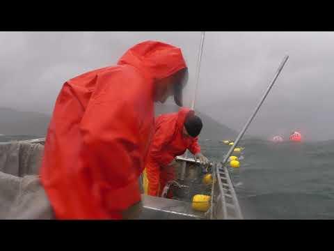 Uyak Bay Storm -- Kodiak Alaska