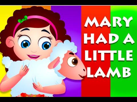 Mary Had A Little Lamb Nursery Rhyme With Lyrics