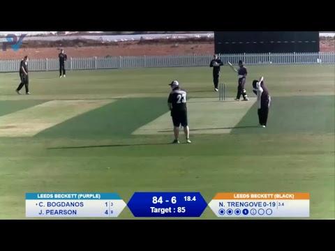 Bear Cricket T20