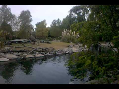 Video-2010-05-02-16-42-01.3gp
