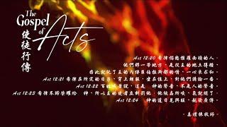 08/03/2021 生命靈糧/使徒行傳 12:20-24/姜禮振 牧師