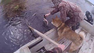 Лов рыбы сетями на разливах реки после распаления льда 2021 4 серия
