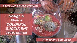 How To Design & Plant A Succulent Terrarium