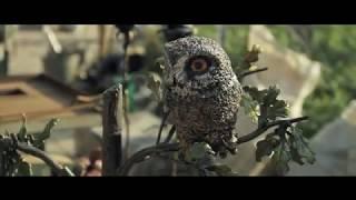 видео Кузнечный фестиваль «Парк кованых фигур — 2017»