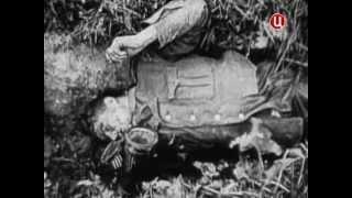 Курск 1943. Встречный бой