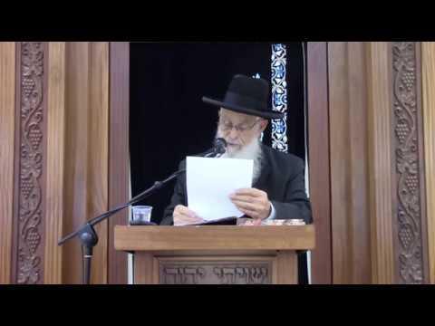 """""""יכיר"""" - שיעור כללי מסכת כתובות - הרב יעקב אריאל"""