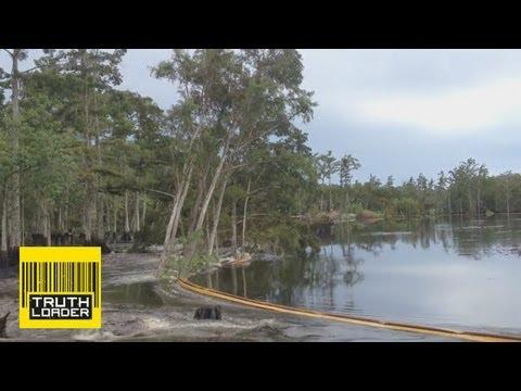 Giant sinkhole swallows trees in Assumption Parish, Louisiana - Truthloader