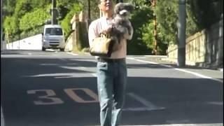 五木ひろしの愛犬だったトイプードルの「モモちゃん」との秘蔵映像を公...