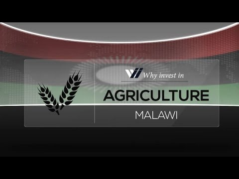 Agriculture  Malawi - Why invest in 2015