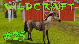 WildCraft Симулятор жизни зверей Онлайн #25 ОБНОВЛЕНИЕ! Новое животное и новая локация!!!
