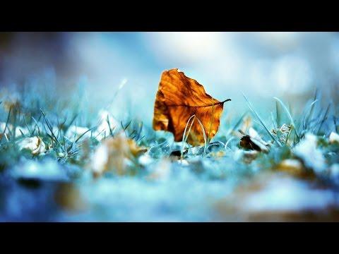 İsmail ŞAHİN - Yalancı kelimeler (kısa bir şiir)