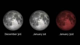 Are You Ready? A Supermoon, Blue Moon  and Total Lunar Eclipse All In 1 Night