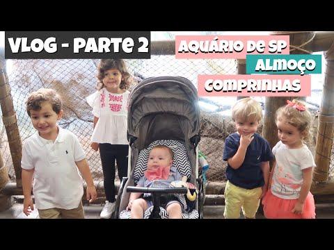 [VLOG 2] Aquário de São Paulo / Almoço com as crianças / Comprinhas de sapatos | Mamãe Felícia