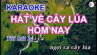 Hát Về Cây Lúa Hôm Nay || KARAOKE HD || Beat Chuẩn