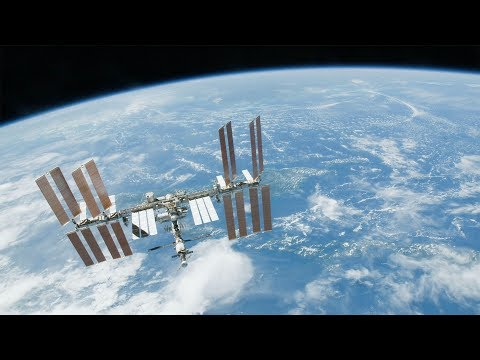 ScienceCasts: Your Immune System... In Space