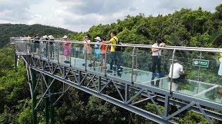 Стеклянный мост в джунглях Янода Хайнань Лучшая экскурсия