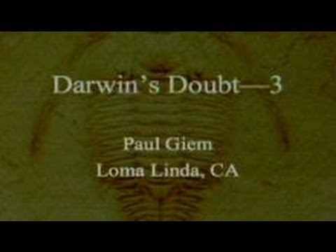 Darwin's Doubt (Part 3) 10-12-2013 by Paul Giem