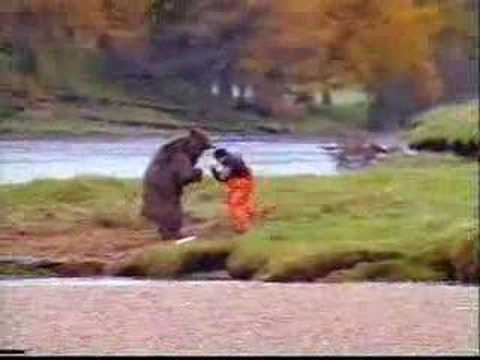 Bear Fights Man Over Fish