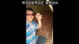이화섭, 윤경애 (선,준) 선교사 선교현장 이야기