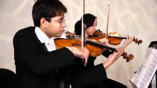 Eleanor Rigby (Beatles) | Baby B Strings