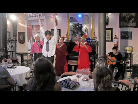 El Jardin Restaurante Flamenco Show and Dinner in Malaga