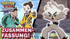 Zusammenfassung & eigene Meinung über Pokemon Schwert und Schild Erweiterungspass!