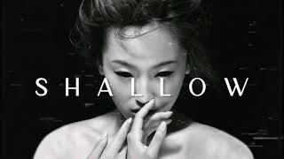Underground Nu Metal / Industrial / Grunge Mix 'SHALLOW'