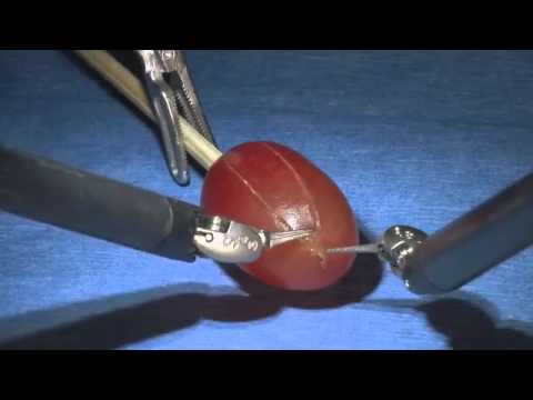 Precision da Vinci Robotic Surgery Peels Grape Skin