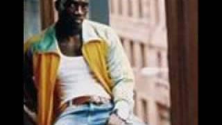 Akon   I Wanna Love You Ft  Cynthia, Don Omar, Tego Calderon