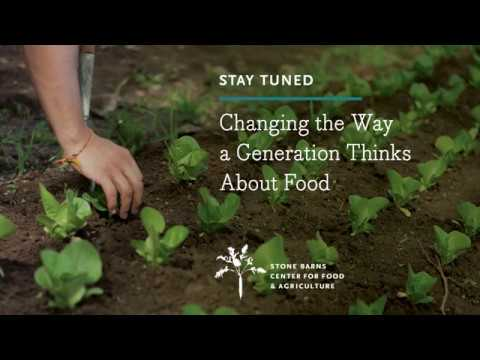 Changing The Way A Generation Thinks About Food