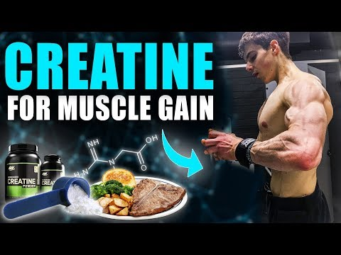 creatine:-how-to-take-it-for-muscle-growth-(creatine-science)