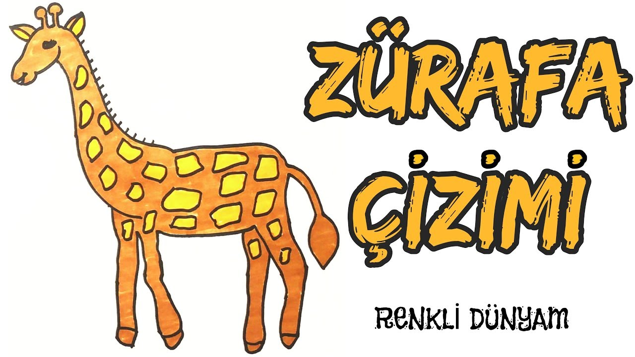 Zurafa Nasil Cizilir Zurafa Cizimi How To Draw A Giraffe