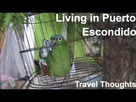 Living In Puerto Escondido