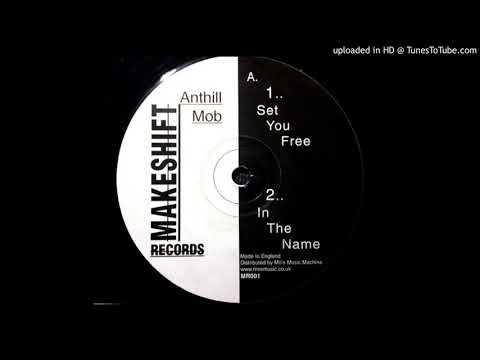 Anthill Mob - In The Name (Makeshift Records - MR001)