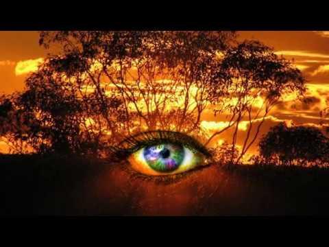 Outback Vision Protocol Pdf
