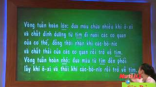 AI THÔNG MINH HƠN HỌC SINH LỚP 5 - LAM TRƯỜNG