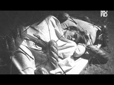 Stanislav Tolkachev -  Intro [mordlp002]