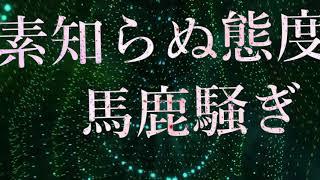 Non Stop Rabbit (ノンストップラビット) 「Refutation」 作詞:田口達也...