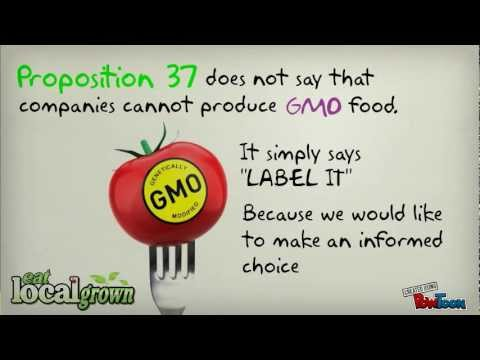 What do Monsanto, GMO's, Corn, Round Up have in common?