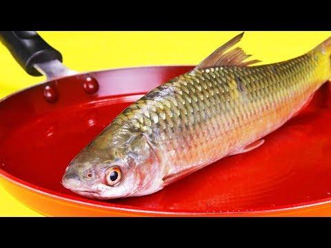 EXPERIMENT Glowing 1500 Degree PAN Vs FISH Herring