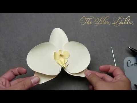 Paper Flower Tutorial: Butterfly Phaleonopsis Orchid