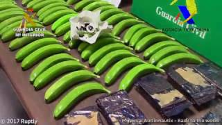 Бананы с кокаином