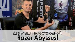Обзор игровой мыши Razer Abyssus — Жирный Taipan!