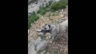 Kangal Çoban Köpekleri  Kayalıklara Bir Şey Sıkıştırdı
