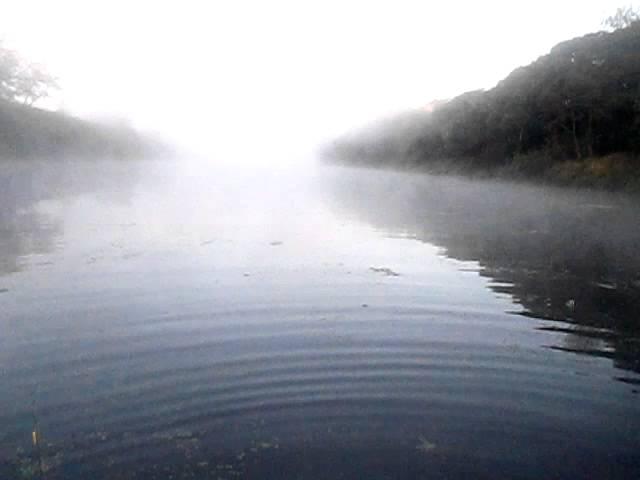 Днепр превращается в болото