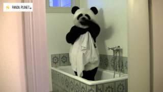 Pandafilmen om BOSTADEN (Earth Hour-uppdrag 3)