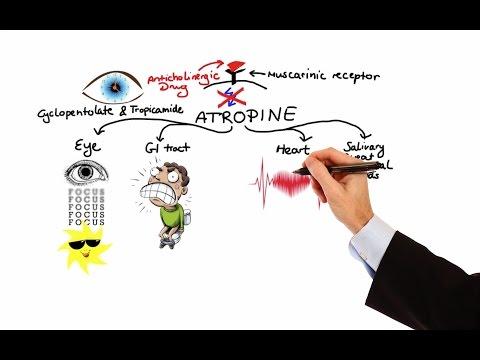 Pharmacology - ANTICHOLINERGIC & NEUROMUSCULAR BLOCKING AGENTS (MADE EASY)