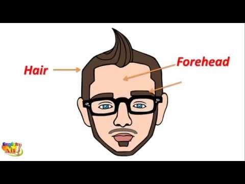 Learn English Vocabulary - Parts Of Head And Face   Body Parts